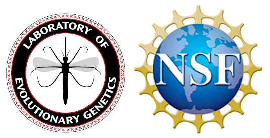 NSF and Student Training